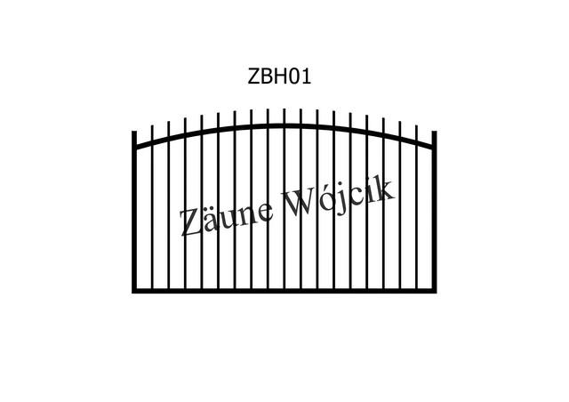 ZBH01