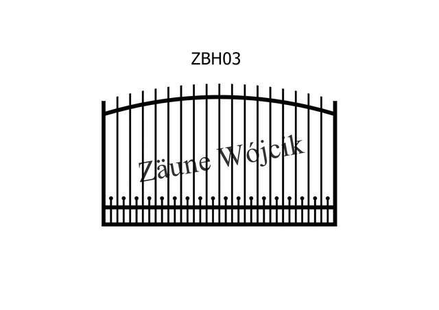 ZBH03