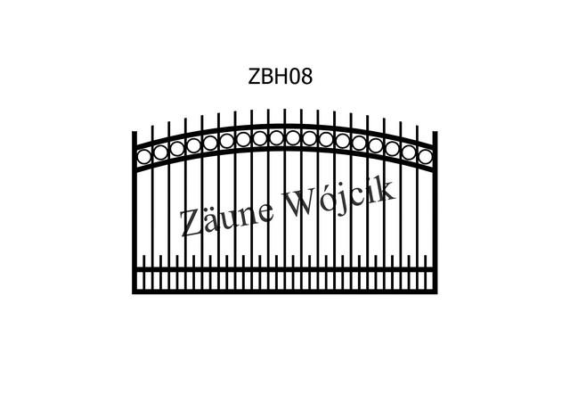 ZBH08