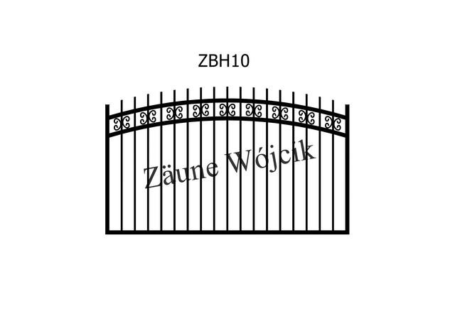 ZBH10