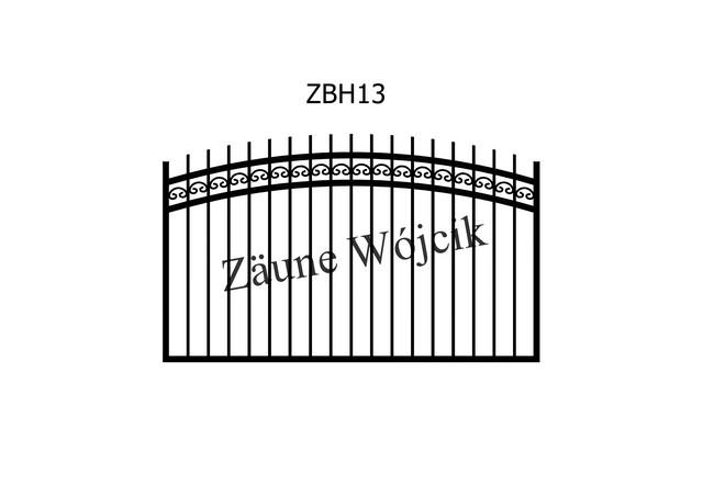 ZBH13