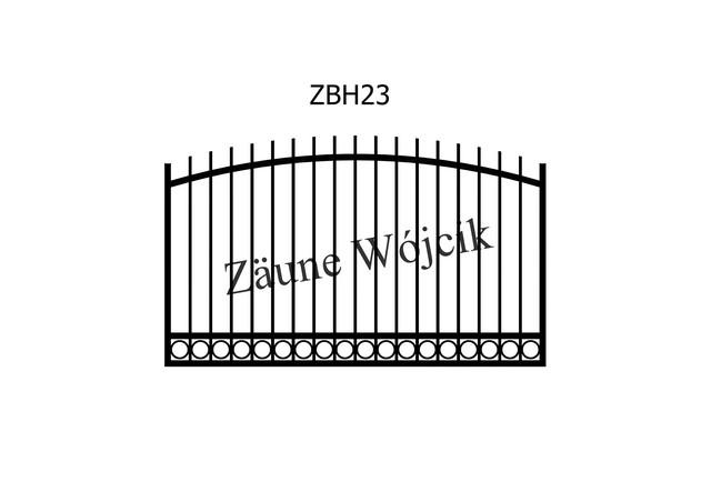 ZBH23