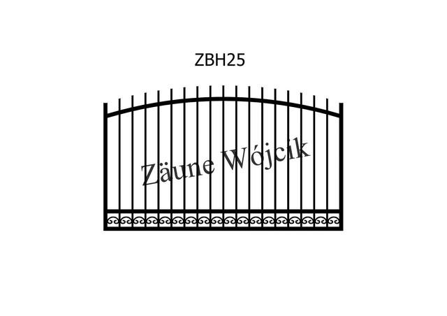 ZBH25