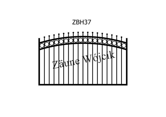 ZBH37