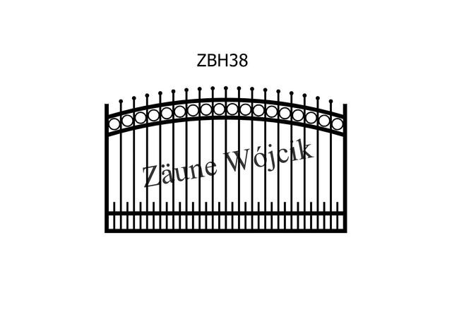ZBH38