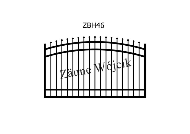 ZBH46