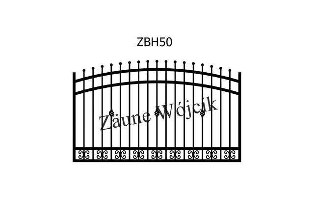 ZBH50