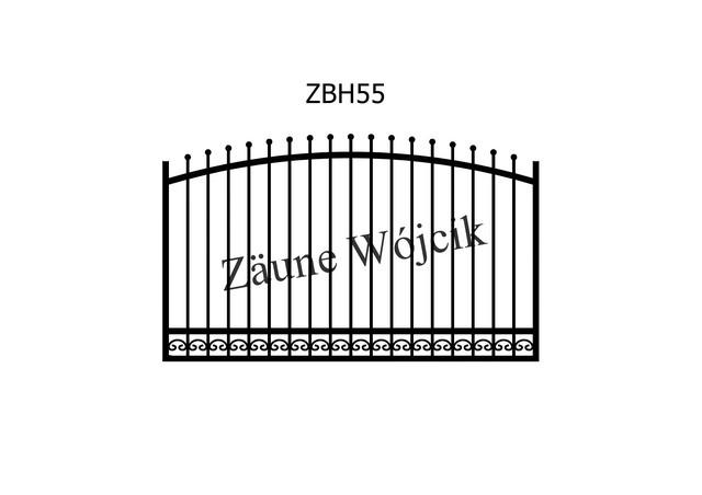 ZBH55