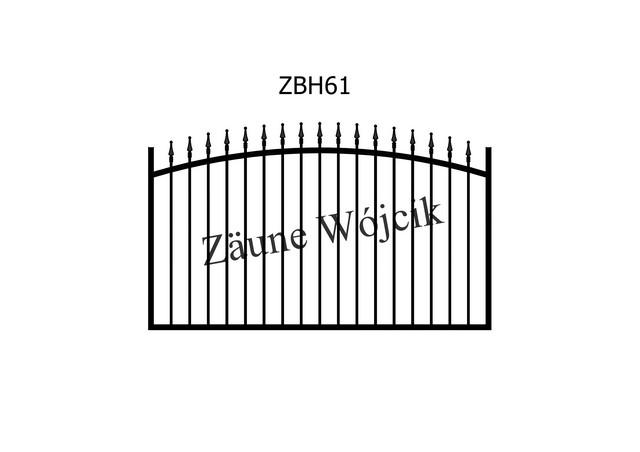 ZBH61
