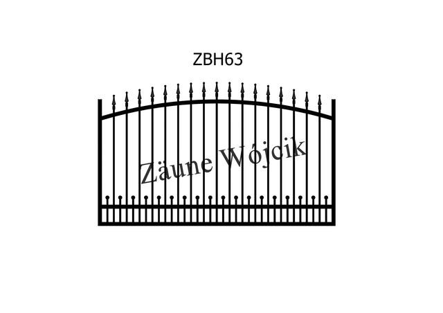 ZBH63