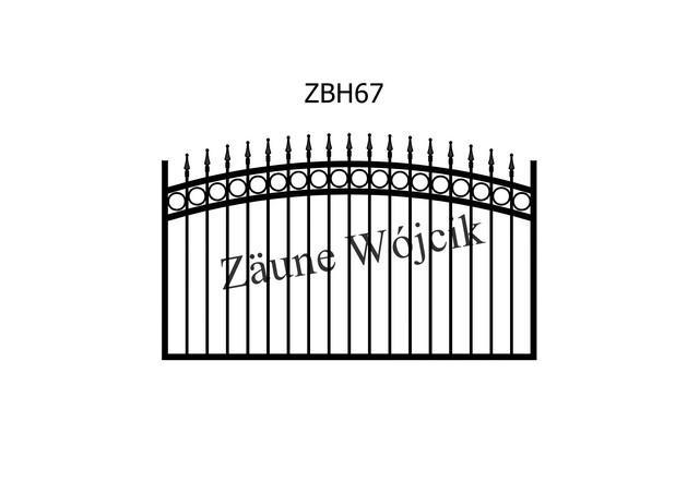 ZBH67