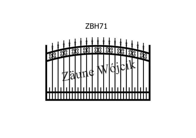 ZBH71