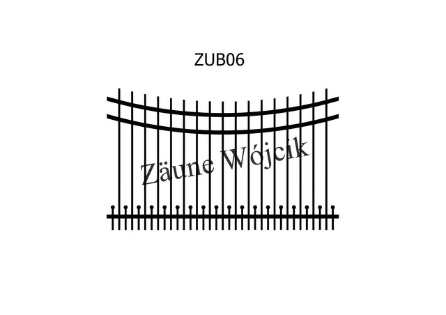 ZUB06
