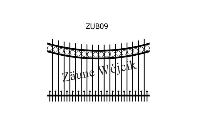 ZUB09