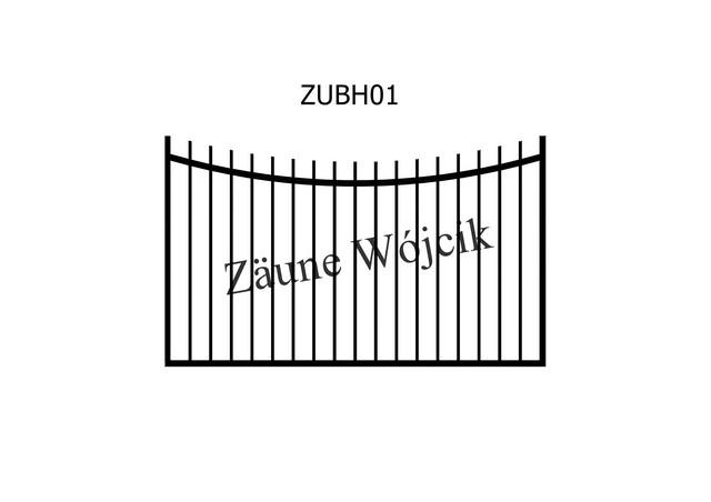 ZUBH01