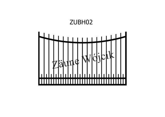 ZUBH02