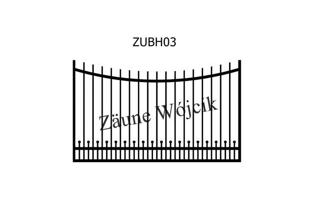 ZUBH03