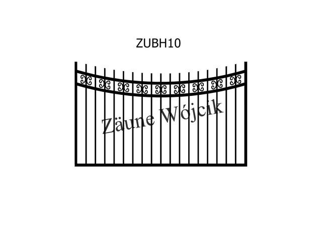 ZUBH10