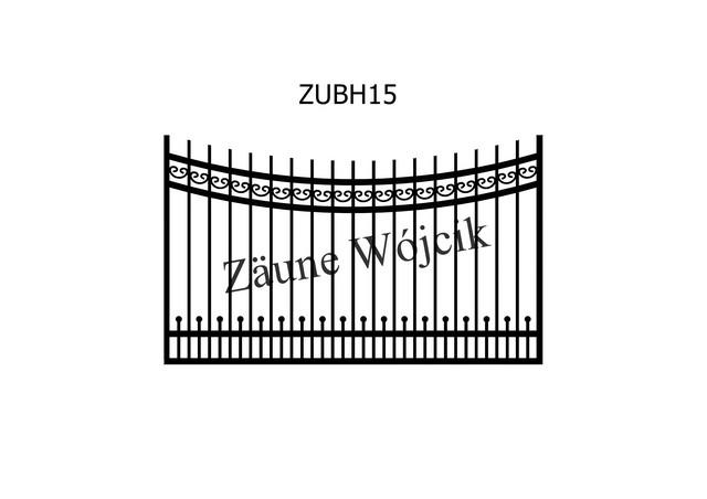ZUBH15