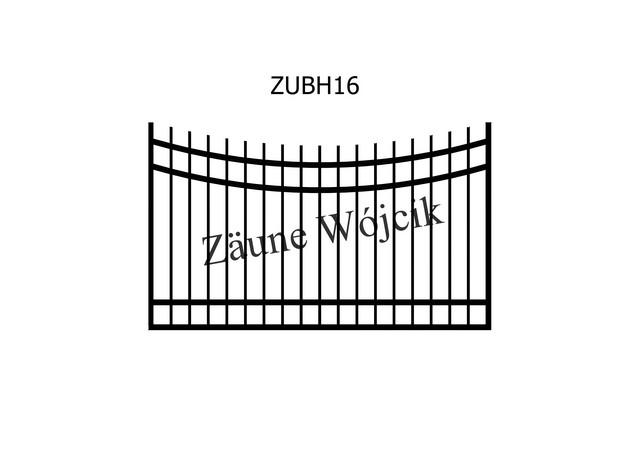 ZUBH16