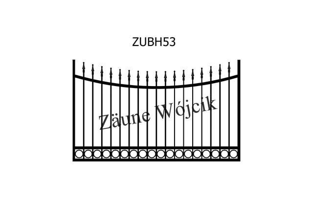 ZUBH53