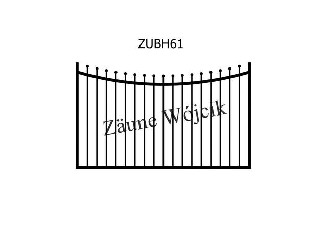 ZUBH61