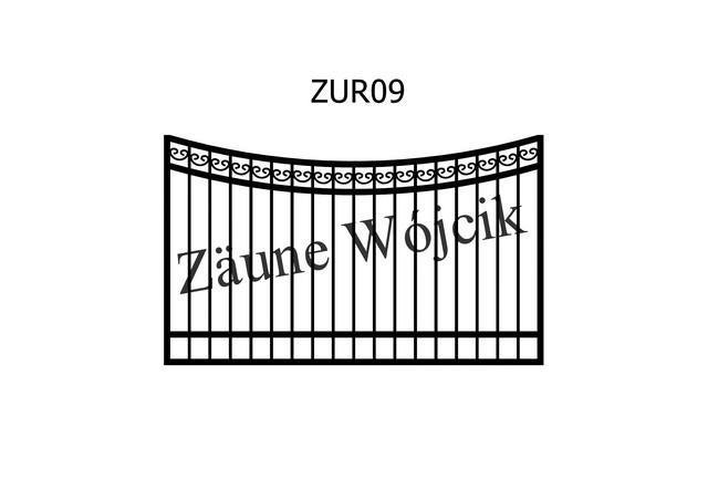 ZUR09