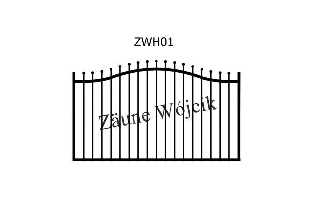 ZWH01