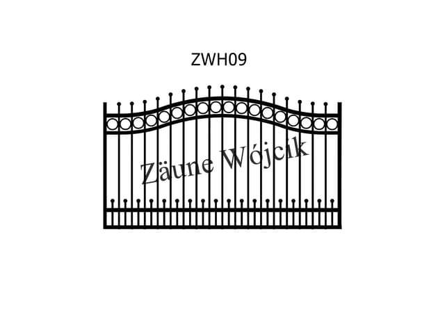 ZWH09