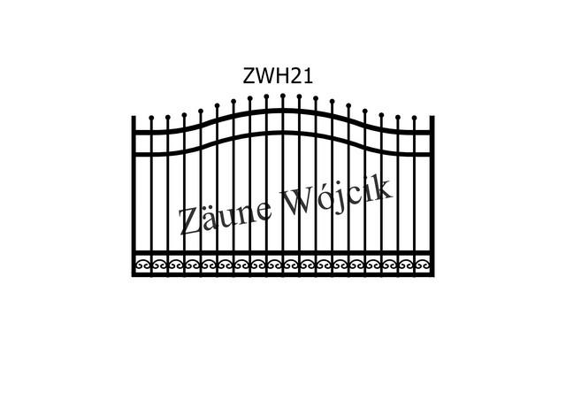 ZWH21