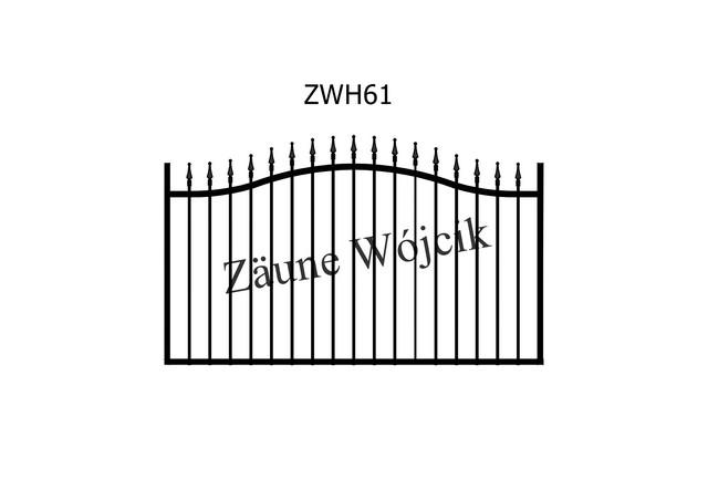 ZWH61