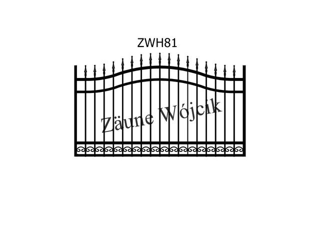 ZWH81